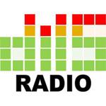 diis radio logo 2018-1